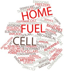 Word cloud for Home fuel cell