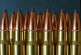 rifle ammunition 5
