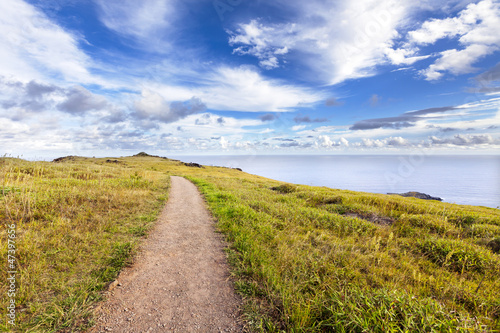 Straight gravel path in landscape