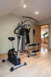 Domestic gym