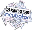 Word cloud for Business incubator