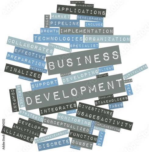 Word cloud for Business development