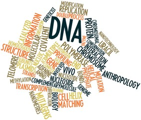 Word cloud for DNA