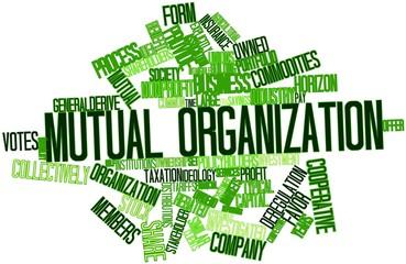 Word cloud for Mutual organization