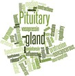 ������, ������: Word cloud for Pituitary gland