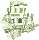 Word cloud for Pituitary gland