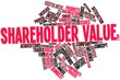 Word cloud for Shareholder value