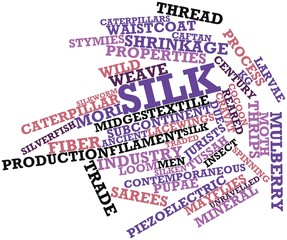 Word cloud for Silk