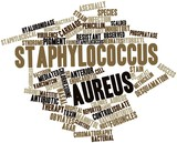 Word cloud for Staphylococcus aureus