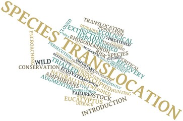 Word cloud for Species translocation