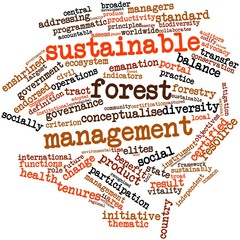 Word cloud for Sustainable forest management