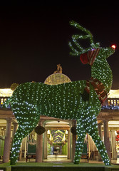 Topiary Reindeer in Covent Garden at Christmas