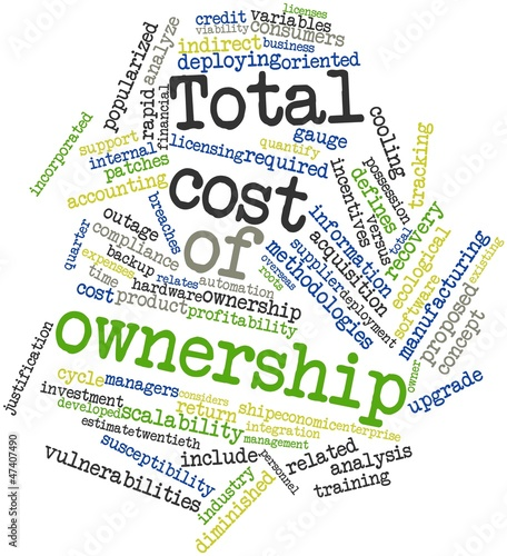 Word cloud for Total cost of ownership