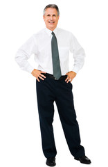 Businessman standing with arms akimbo
