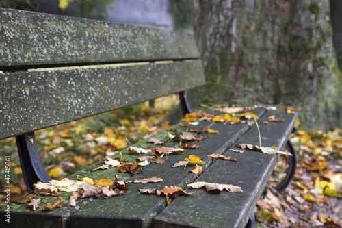 Sitzbank am Chiemsee im Herbst, Bayern