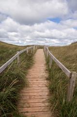 Walkway over Dunes