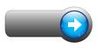 BLANK web button (rectangular blue icon arrow symbol)