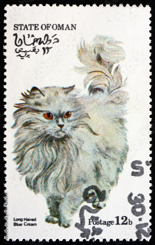 Postage stamp Oman 1973 Long Haired Blue Cream Cat