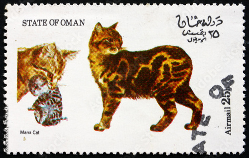 Postage stamp Oman 1973 Manx Cat
