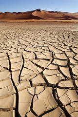 Dry Cracked Earth - Sossusvlei - Namibia