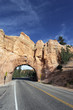 Road to Bryce Canyon, vertical view