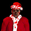 Zombie Santa With Blood