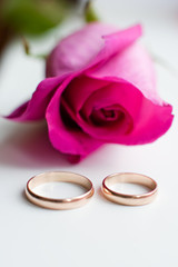 Purple rose and wedding gold ring on a white background.