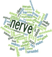 Word cloud for Nerve