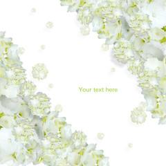 白い花斜め配置