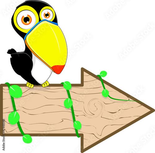 toucan bird sitting on a blank wooden