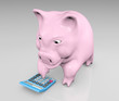 piggy with a calculator