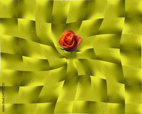 rosa rossa sopra foglie d'oro