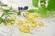 Leinwanddruck Bild - natural supplement
