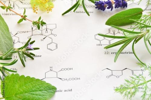 Papiers peints Lavande herb and science