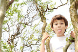 Young boy  in a tree sticks his tongue out