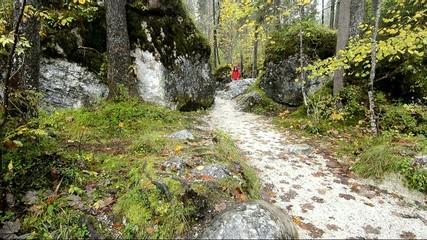Frau in roter Jacke beim wandern im Wald