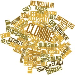 Word cloud for Cloning