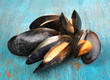 Mussels in shell on blue wooden table