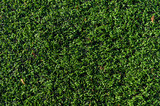 artificial grass field poster