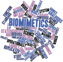 Word cloud for Biomimetics