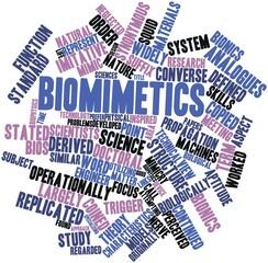 Word cloud for Biomimetics