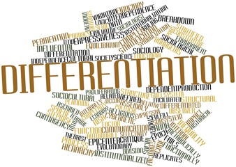 Word cloud for Differentiation