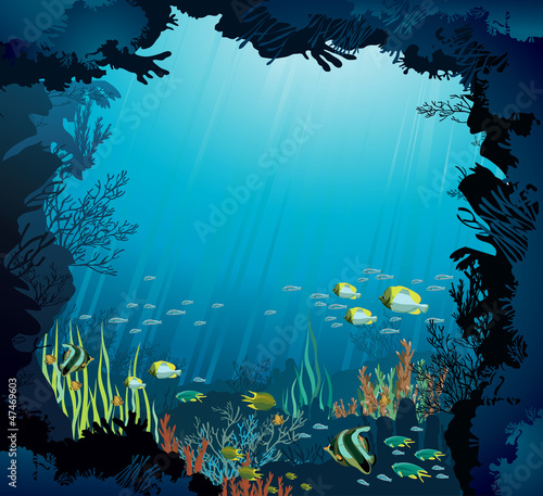 Underwater life - Coral reef and fish
