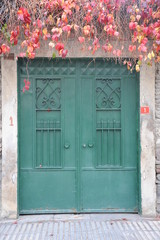 the old iron door