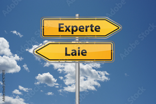 Poster Experte vs. Laie