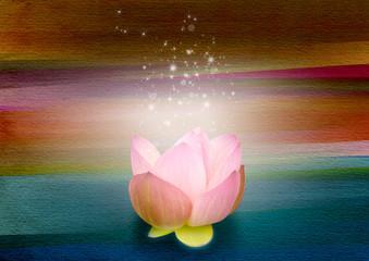 虹と光と蓮