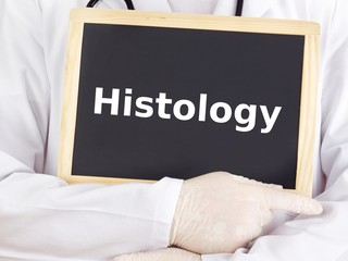 Doctor shows information on blackboard: histology