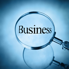 magnify business