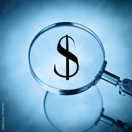 magnify dollar