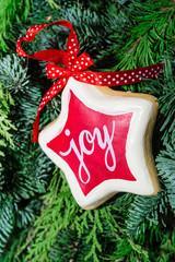 Wishing a joyful christmas